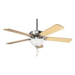 Shop ceiling fan progress lighting ceiling fans on houzz for Ceiling fan motor screws
