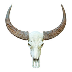 Walls Need Love - Rounded Horn Bull Skull Decal - Round up your barbecue fixin's and fire up the grill. This western-themed bull skull decal is sure to bring some tang to any shindig.