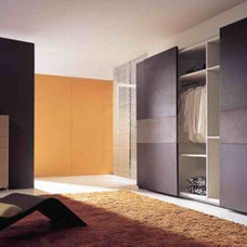 Contemporary  Sliding Closet Doors
