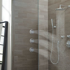 Modern Showerheads And Body Sprays by Moen