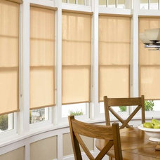 Contemporary Roller Blinds by Accent Window Fashions LLC