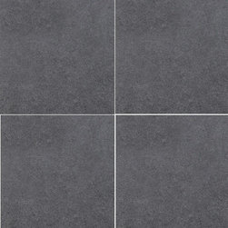 Tilesbay.com - Sample of 24X24 Glazed Dimensions Graphite Porcelain Tile - Dimensions Graphite 24x24 Glazed Porcelain tile is Versatile and Elegant. It stands up to today's demanding applications both indoors and outdoors. Easy to clean and low maintenance, this product is ideally suited for both residential and commercial applications