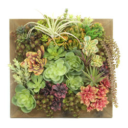 Dalmarko Designs - Succulent Wall Tile - Our succulent wall tile is a versatile piece, framed with a reclaimed wood look. Hang alone or group with different size tiles for quite a statement!