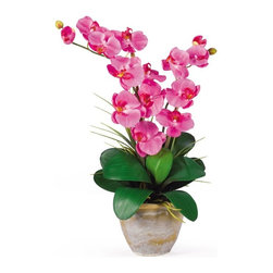 """Double Stem Phalaenopsis Silk Orchid Arrangement - This 25 inch double stem phalaenopsis silk orchid plant is nothing short of an explosion of color. Expertly arranged, this piece was designed to enhance any space. Each plant comes stacked with two amazing phalaenopsis stems each with 6 flowers and 2 buds. Finished with a gorgeous glazed ceramic vase this item is not to be missed. So whether you're looking for a gift or just want to perfect your decor..you're only one click away. Color: Dark Pink, Height: 25"""", Vase: H 5-1/2"""" W 7"""" Height= 25 in x Width= 15.5 in x Depth= 12 in"""