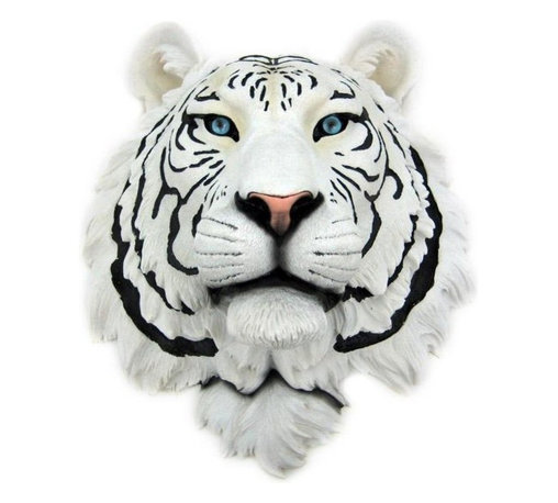 White Tiger Head Mount Wall Statue Bust - This awesome, cold cast resin replica White Tiger wall mount is a prefect addition to any jungle themed room. The head measures 16 inches tall, 13 1/4 inches wide and 8 inches deep. The detail is incredible, down to the hand painted eyes. This white tiger`s head is brand new, and makes a great gift for any big cat fan.