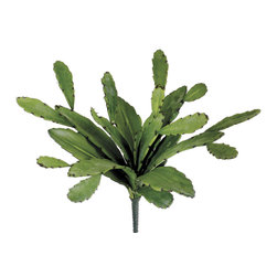 Silk Plants Direct - Silk Plants Direct Cactus Plant (Pack of 6) - Pack of 6. Silk Plants Direct specializes in manufacturing, design and supply of the most life-like, premium quality artificial plants, trees, flowers, arrangements, topiaries and containers for home, office and commercial use. Our Cactus Plant includes the following: