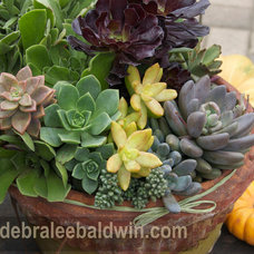 Eclectic Outdoor Pots And Planters by Debra Lee Baldwin