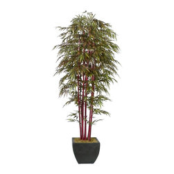 Laura Ashley - Laura Ashley 8 ft. Silk Realistic Bamboo Tree w Planter - Constructed from Plastic, polyester, bamboo, moss, foam, glue, wire, fiberstone. Planter-Container Included. Assembly Required. Beautiful lifelike bamboo tree in a designer planter. No need to shop for a planter separately - comes complete with decorative planter. High-quality artificial plant and real bamboo trunks combine to offer years of beauty with virtually no maintenance. Decorate your home or office. Bamboo is a natural material that absorbs color in various degrees - this natural product will have slight color variations that make the product more lifelike and enhance the beauty of the item. 28 in. L x 28 in. W x 96 in. H (41.8 lbs.)The Laura Ashley Brand is known for harmonizing tranquil colors and classic shapes allowing you to bring the lush tropics to your home decor with this multi-trunked bamboo tree. Use this tree as a decorative accessory to add dramatic appeal to home or office. This majestic silk plant showcases thousands of leaves on real bamboo trunks. Bamboo is a natural material that absorbs color in various degrees, and these natural trunks have slight color variations that make the product more lifelike and enhance the beauty of the item. And, there is no need to shop for a planter separately - the decorative planter pictured is included. Plants add a feeling of life to a room, making it warmer and more welcoming; artificial plants let you decorate without concern for water damage, trimming, or soil. This high quality tree is brought to you by Vintage Home - setting the standard in permanent botanicals, Vintage Home products bring you a richer and more realistic plant.