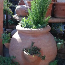 Mediterranean Outdoor Planters by Eye of the Day