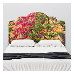 J. Paul Moore - Paul Moore's Seasons and Conifers, TN Headboard Wall Decal - Fall colors abound on this adhesive headboard wall decal. Delight in the colors of Tennessee with Paul Moore photography.
