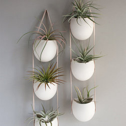 3 Drop Porcelain and Leather Hanging Container by Fashioned By - Tiered white and leather tillandsia holders — be still my beating heart. These beauties would be a great addition to all of the white and wood pieces in my home.