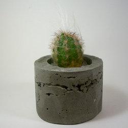 Dachshund in the Desert Handmade Concrete Planters - Dachshund in the Desert handmade planters