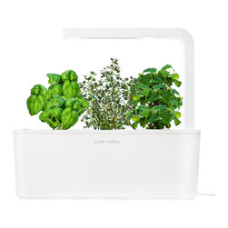 Click and Grow - Smart Herb Garden Starter Kit with Basil, Thyme, and Lemon Balm - The Smart Herb Garden starter kit grows fresh culinary herbs and greens for you automatically - no gardening experience or backyard required! The kit includes an LED grow light, 3 smart soil plant cartridges, and the basin that automatically regulates water levels to start growing delicious basil, lemon balm, and thyme herbs in just a few weeks. Fill the water basin, plug it in, and in 2-4 weeks you will see the plant sprouts, followed by full growth in 2-4 months. Want more variety? Smart Herb Garden refills come in many varieties, including chili pepper, mini-tomato, salad rocket, lemon balm, basil, and thyme.