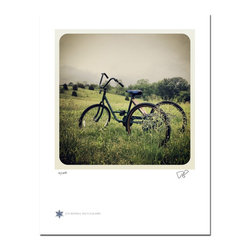 "Farley Bike, Limited Edition, Photograph - ""Farley Bike is a photograph of a bike resting in a prairie in Farley, Missouri shortly after a rain.   Technical Information:  This is a limited edition photograph produced on Epson Premium Presentation Fine Art Matte Media using an archival pigment. Each photograph is produced, signed and numbered by the artist. Only one hundred or fewer prints are produced in each series. Prints are delivered in a crystal clear presentation sleeve supported with a white backing board.   On 8.5 x 11 media the printed image is 7 x 7 inches, leaving a three quarter inch white border on three sides with a weighted bottom. This white border allows for for easy framing with or without a matte. Perfect for small spaces that need a splash of unique artistry.  Priority shipping is always FREE in the Continental United States!  Please feel free to contact me with any additional questions you may have."""