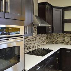 Modern Kitchen Cabinetry by 21st Century Kitchen & Bath