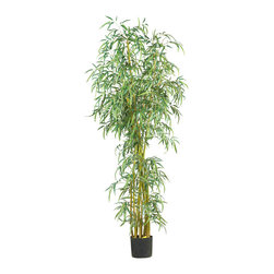 Nearly Natural - 7' Curved Slim Bamboo Silk Tree - You'll cherish the extraordinary beauty and grace of this uniquely styled bamboo tree. Standing seven feet high, this exotic plant is covered from head to toe with 2275 rich vibrantly colored leaves. Its lush greenery provides a sense of privacy and seclusion when placed near a desk or office window space.