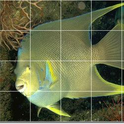 Picture-Tiles, LLC - Sea Life Photo Wall Tile Mural 19 - * MURAL SIZE: 24x36 inch tile mural using (24) 6x6 ceramic tiles-satin finish.