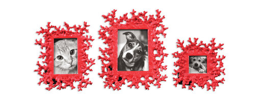 Uttermost - Red Coral Photo Frames, Set of 3 - Celebrate the sea with this fabulous set of faux-coral frames. The gleaming, bright red finish is particularly suited to your black and white photos.