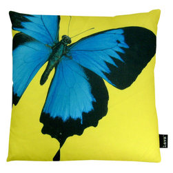 Social Butterfly 18X18 Pillow (Indoor/Outdoor) - 100% polyester cover and fill.  Zippered closure with 100% polyester filled insert.  Made in USA.  Spot clean only.  Safe for use indoors or out.