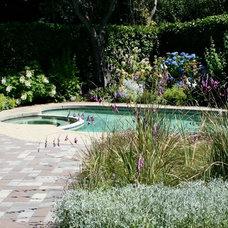 Modern Pool by Dirk Moyer, Landscape Architect