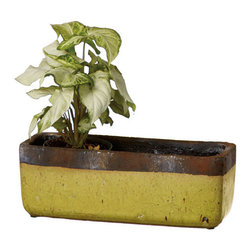 Avocado Green Planter - For a pop of fun, our vote goes to this bright lime green planter. It has a cool, organic feel to it that fits right in to your garden, or outdoor deck. Plant fresh herbs or succulents for a year-round bounty.