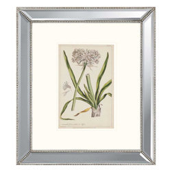 Paragon - Polianthes - Framed Art - Each product is custom made upon order so there might be small variations from the picture displayed. No two pieces are exactly alike.