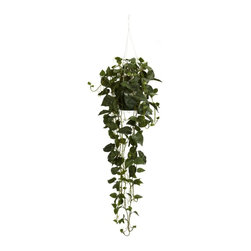 Philodendron Hanging Basket Silk Plant - This amazing philodendron hanging basket speaks for itself. This silk plant features 264 meticulously shaped green leaves with vines hanging 30 inches below the bottom of the basket. From the top hook to the bottom of the vines the plants measures a strong 44 inches. Perfect for home or office this silk hanging basket is a must have. Height= 44 in x Width= 22 in x Depth= 22 in