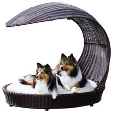 Contemporary Pet Beds by The Refined Canine