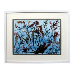"Ocean Garden, Oshibana Art - Oshibana (pressed plants) artwork in a 16"" x 20"" white frame."