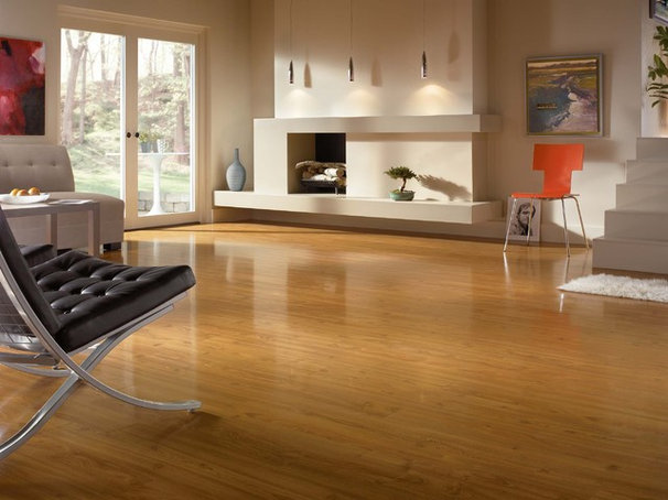 Laminate Flooring by Paul Anater