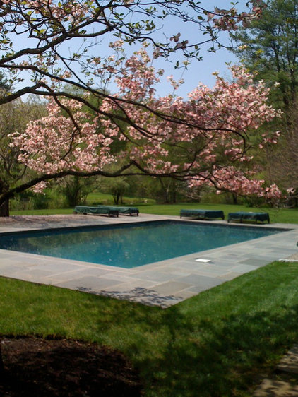 Traditional Hot Tub And Pool Supplies by Rick Pinto Swimming Pools, Inc