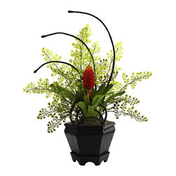 "Bromeliad and Maidenhair Fern Arrangement - Some combinations of plants simply work perfectly together. That's definitely the case with this ""unusual yet stunning"" Bromeliad & Maidenhair Fern Arrangement. With the fern providing a soft, almost star-like backdrop, the lush Bromeliad stands regal within the included decorative planter. And it will stay looking beautiful for years without water or sun. Ideal for both home and office decorating. Height= 19 In. x Width= 17 In. x Depth= 12 In."