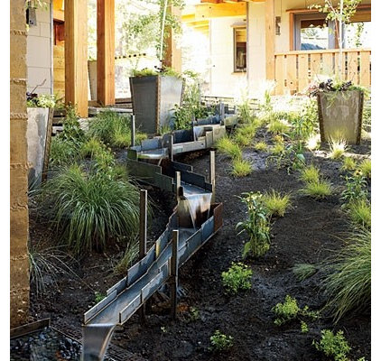 asian landscape by Shades Of Green Landscape Architecture