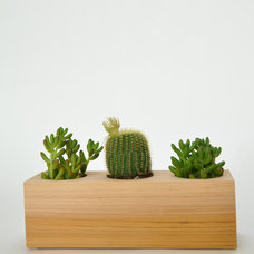 Contemporary Indoor Pots And Planters by KOROMIKO
