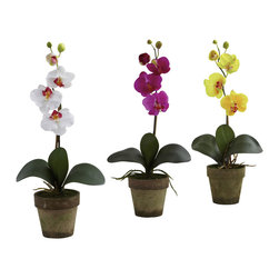 Nearly Natural - Potted Phalaenopsis (Set of 3) - Nestled in a charming pot, this silk orchid arrangement will energize even the dullest of areas.  It comes with a perfectly proportioned spike of phalaenopsis orchid.  It stands 19 inches in height and is sure to be a crowd pleaser.  Arriving in a set three, these orchids are sure to bright any space.