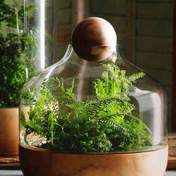 Small Danish Terrarium -
