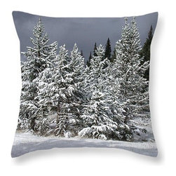 Decorative Throw Pillows - Decorative Throw Pillows