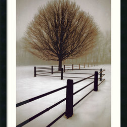 "Amanti Art - ""Solitude"" Framed Print by David Lorenz Winston - Very cool. Adding this peaceful and relaxing snow scene print to your space simply proves you can chill with the best of them. It comes framed and matted in Polar White, ready to hang out with you any time."