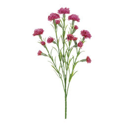 Silk Plants Direct - Silk Plants Direct Carnation (Pack of 24) - Beauty - Silk Plants Direct specializes in manufacturing, design and supply of the most life-like, premium quality artificial plants, trees, flowers, arrangements, topiaries and containers for home, office and commercial use. Our Carnation includes the following: