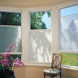 Silhouette - This feature is called top down / bottom up and is available with many types of shadings, but the unique characteristics of the Silhouette shade make it even more versatile.