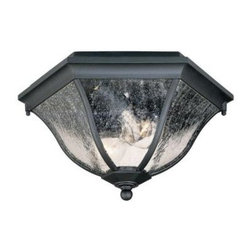 Acclaim Lighting - Flushmount Collection Ceiling-Mount 2-Light Outdoor Matte Black Light Fixture - Shop for Lighting & Fans at The Home Depot. This 2-light ceiling mount fixture is from our Flushmount collection and is made of durable cast aluminum. It will not rust and resists corrosion. This lantern features clear seeded glass panes.