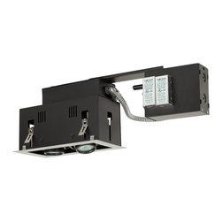 Jesco Lighting - Jesco MGR1650-2ESB 2-Light Double Gimbal Linear Recessed Fixture Low Voltage - Jesco MGR1650-2ESB 2-Light Double Gimbal Linear Recessed Fixture Low Voltage