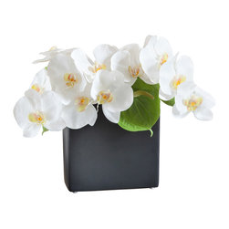 "Orchid Diva - 13"" Artificial Phalaenopsis Orchid Centerpiece - Zest - Create charm and bring attention to your space with artificial white Phalaenopsis orchids and green Anthurium in elegant ceramic vase."