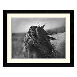 Amanti Art - Fierce Grace Framed Print by Tony Stromberg - Hang this beautifully framed photograph above your desk for those long days in the office when you need a reminder of what freedom feels like. Then pick up the phone and book your next vacation to Montana.