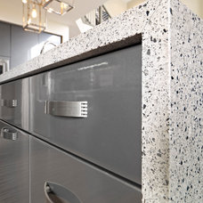 Contemporary Kitchen Cabinets by Homes by Avi