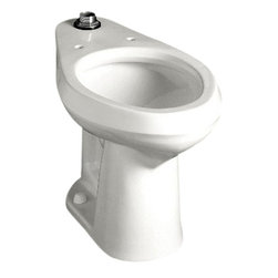 """American Standard - American Standard 3543.001US.020 Colorado Elongated Bowl Only,  White - American Standard 3543.001US.020 Colorado Elongated Bowl Only,  White. This elongated floor-mount flush-o-meter valve toilet comes with a top spud, a vitreous china construction, a 10"""" or 12"""" Rough-in, a 15"""" height for accessiblity, a powerful direct-fed siphon jet action, a fully-glazed 2"""" trapway, a 1-1/2"""" inlet top spud, and 2 bolt caps."""