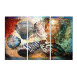 READY2HANGART.COM - Ready2hangart Alexis Bueno Shells (3-PC) Canvas Wall Art Set - This Sea Shell design was inspired by the Caribbean Islands; sandy tones and rustic shapes. The shell art is offered as a 3-PC Canvas Art Set. It is fully finished, arriving ready to hang on the wall of your choice.