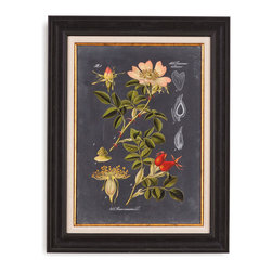 Bassett Mirror - Bassett Mirror Framed Under Glass Art, Midnight Botanical I - Midnight Botanical I
