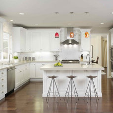 Contemporary  Contemporary kitchen remodel