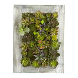 Succulent Wall Decor - I would love to hang these faux succulent wall hangings in my master bedroom. They're a great way to add some green without having to worry about bringing an annoying watering can in your room.